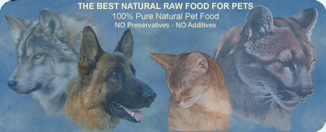 Best Pricing On Raw Meats For Dogs